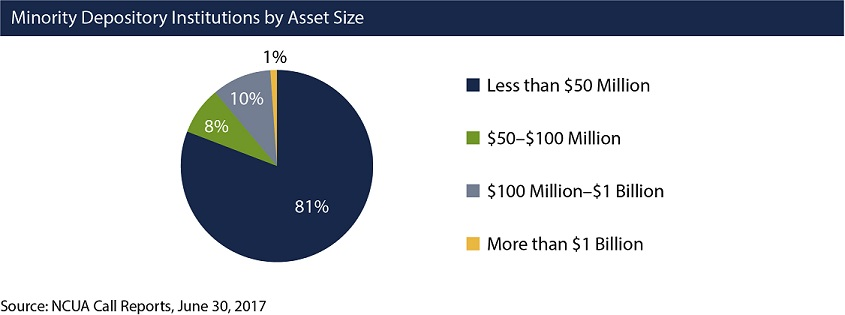 Pie chart showing MDIs by asset size. 81 percent have less than $50 million in assets. 8 percent have $50-$100 million in assets. 10 percent have $100 million to $1 billion in assets. 1 percent have more than $1 billion in assets.